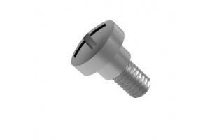 Philips .246 x .148 screw