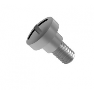 Philips .246 x .148 screw